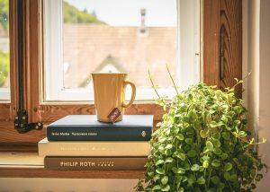 Books near window