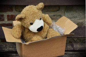 A bear in a cardboard box.