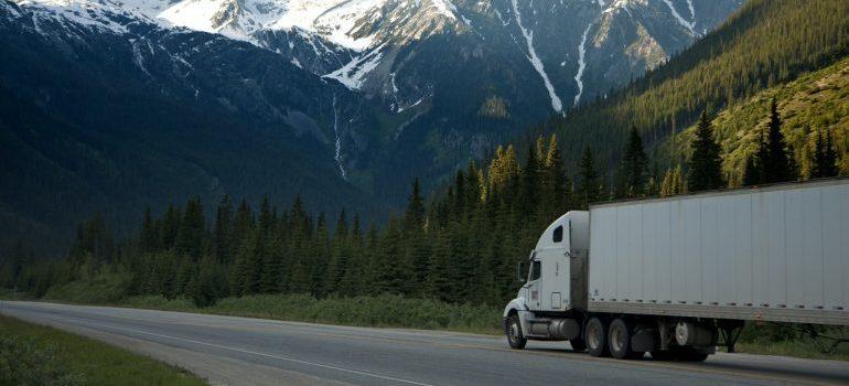 Trailer passing next to pine tress
