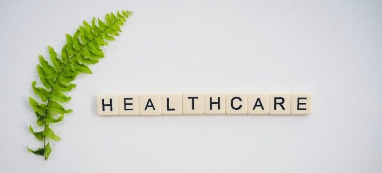Fern leaf next to letter spelling healthcare on a white surface